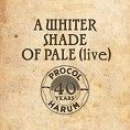 Procol Harum - A Whiter Shade Of Pale (Download)