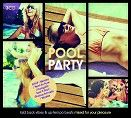 DIVE INTO SUMMER! - POOL PARTY ... THE ALBUM